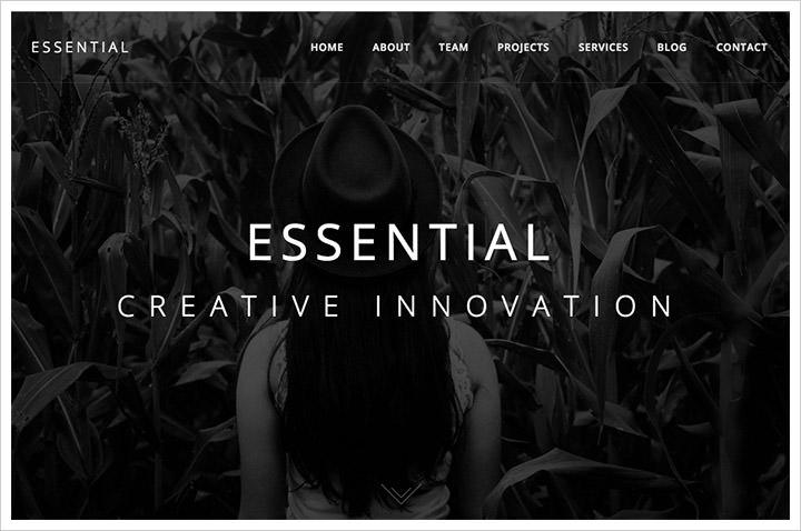 50个纯净极简风格网页设计 酷站欣赏-第26张