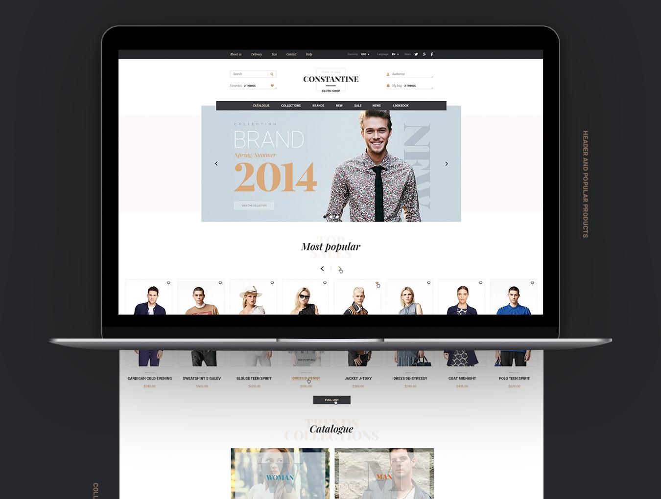 [VIP专享]超酷的电商网站模板.psd素材下载 VIP界面-第6张