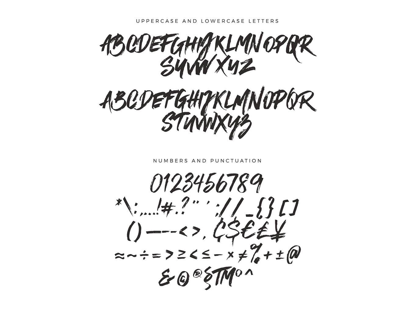 [VIP专享]神秘完美的标志设计字体 VIP样机素材-第6张