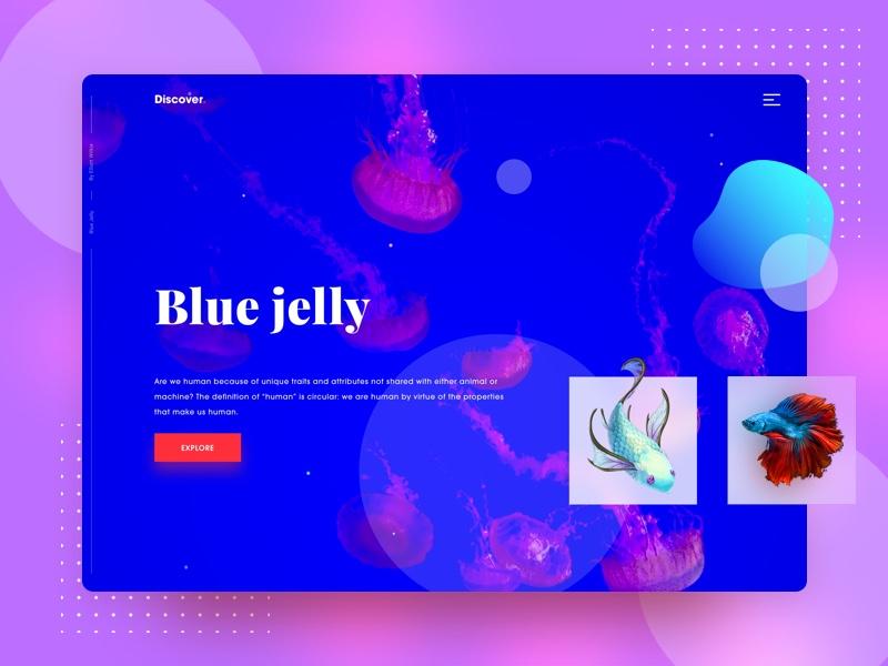 水生生物介绍页面.Sketch素材下载 网页模板-第1张