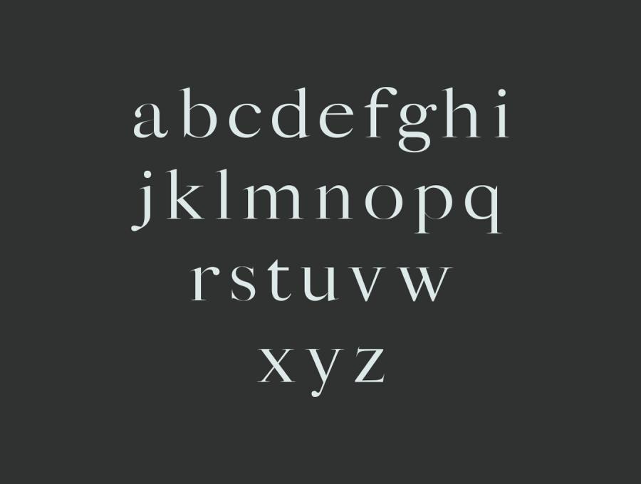 Sharis Serif 英文字体.Font字体下载 其他-第2张