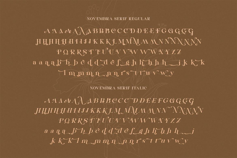 高端时尚优雅多用途的Novembra Serif 英文字体插图1