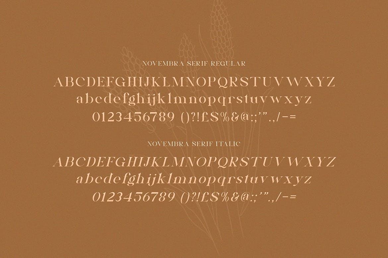 高端时尚优雅多用途的Novembra Serif 英文字体插图2