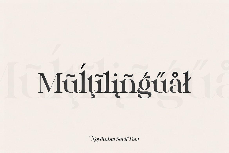 高端时尚优雅多用途的Novembra Serif 英文字体插图4