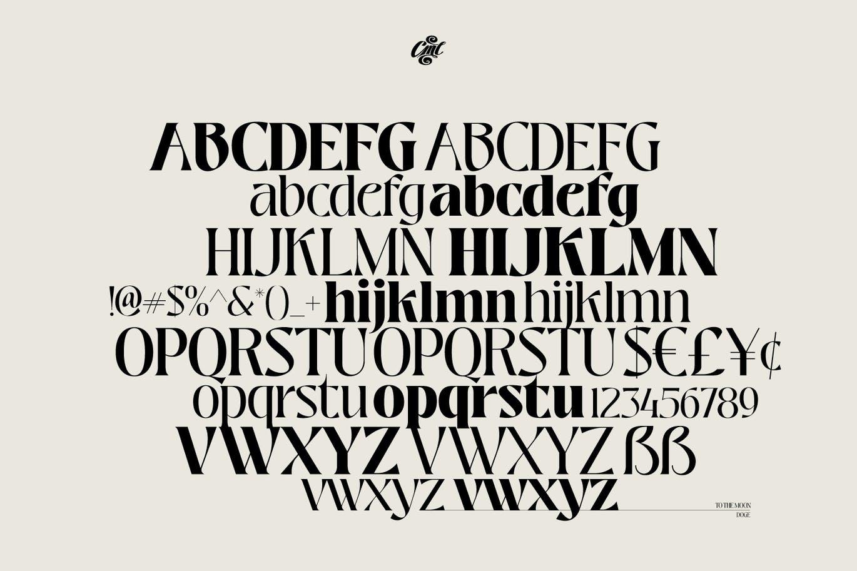 时尚高端优雅清新多用途的装饰衬线英文字体设计插图7