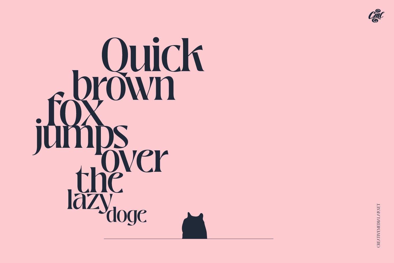 时尚高端优雅清新多用途的装饰衬线英文字体设计插图11