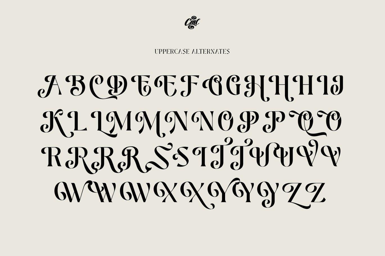 时尚高端优雅清新多用途的装饰衬线英文字体设计插图14